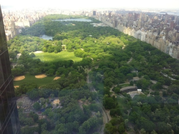 Central Park by Mick Hales