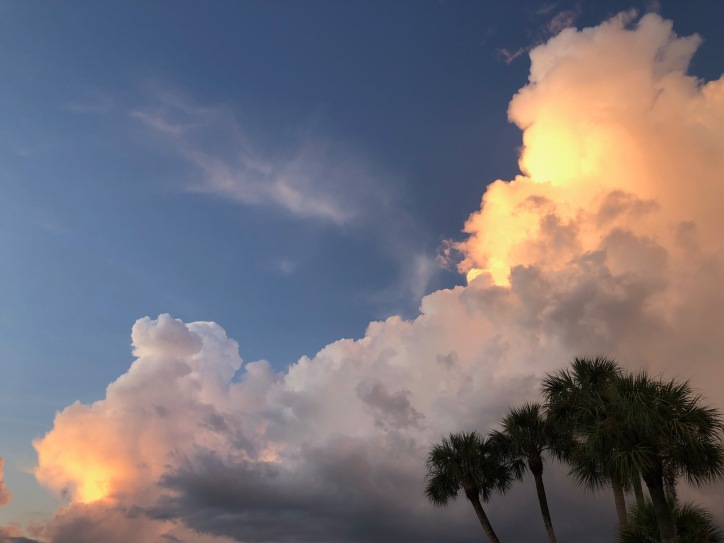 Florida sky by Mick Hales